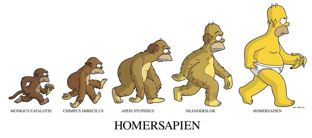 Imagen 4 Evolución